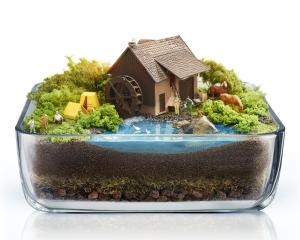 Terrarium house