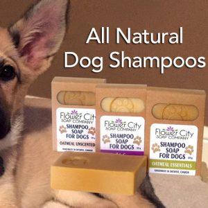 All Natural Dog Soap Shampoo