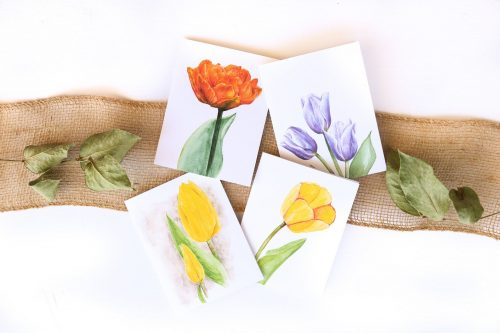 Watercolour Tulip Note Cards Pack